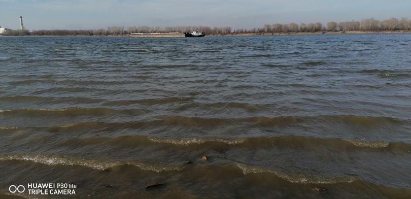 снимка 2 На брега на Дунав