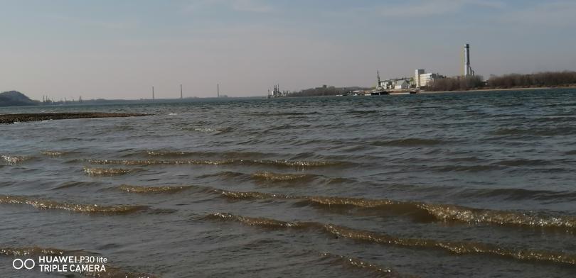 снимка 1 На брега на Дунав