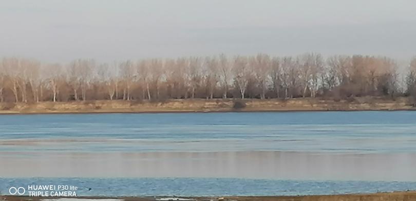 снимка 6 Маловодие и на... Дунав!