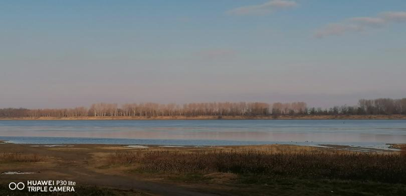 снимка 5 Маловодие и на... Дунав!