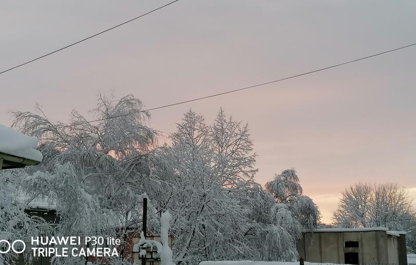 снимка 1 Снежен Свищов