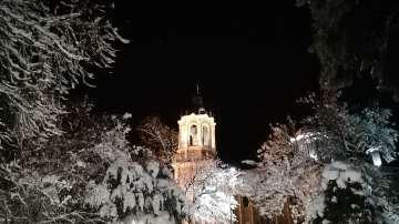 Снежен Свищов