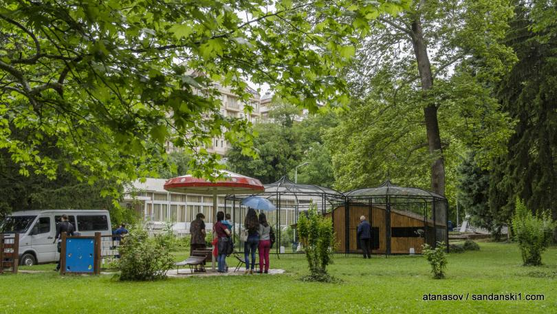 снимка 8 15 пауни бяха заселени в парк Св. Врач в Сандански