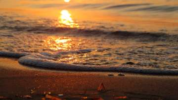Морски настроения