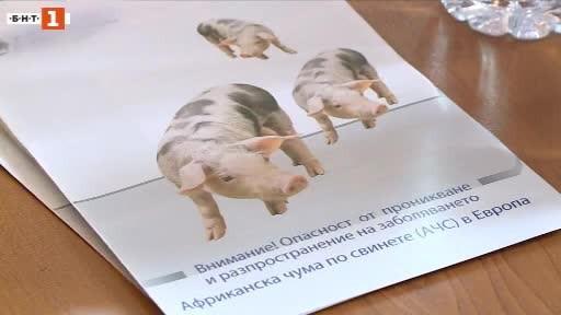 Снимка: Мерки във Варненско заради разпространението на африканска чума по свинете