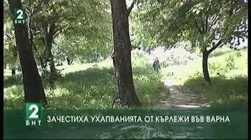 Зачестиха ухапванията от кърлежи във Варна