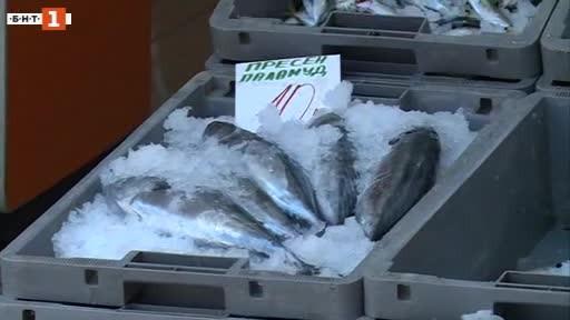 Пет търговски обекта за риба на Кооперативния пазар във Варна