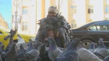 Историята на Величка Коцева, която се превърна в пазителка на гълъбите