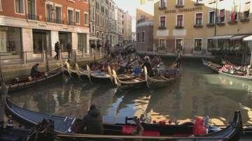 Спад на резервациите преди фестивала във Венеция