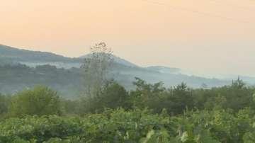 250 декара дъбова гора и пасища изгоряха край Ветрен