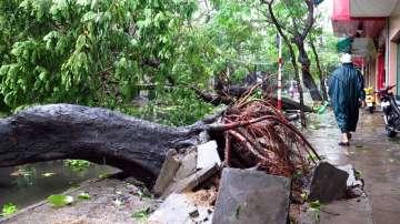 Близо 20 жертви взе тайфунът във Виетнам (СНИМКИ)