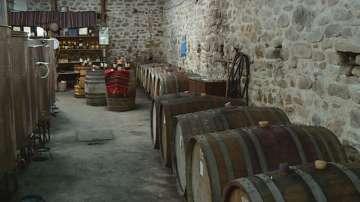 Дефиле на младото вино през уикенда в Пловдив