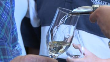 Традиционни родни сортове вина намират пазар в Англия