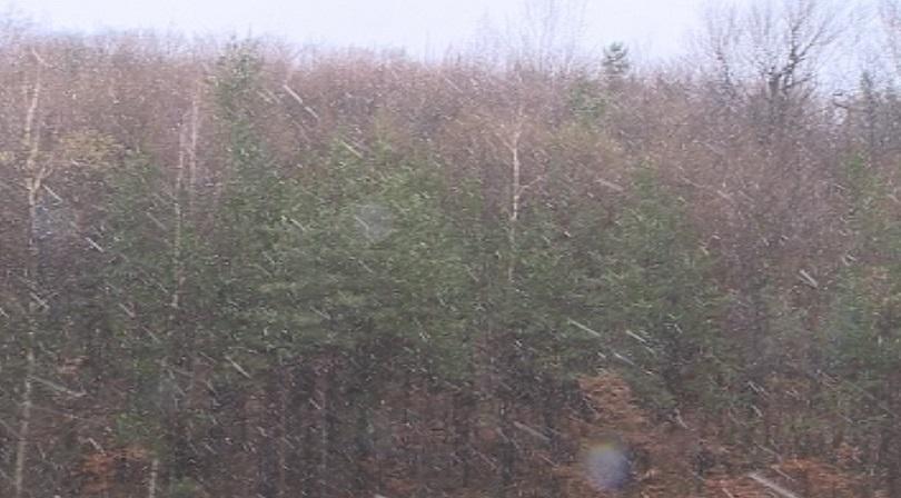 снимка 3 Сняг на прохода Витиня (СНИМКИ)
