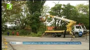 Санитарна сеч във Варна заради разширяване на булевард