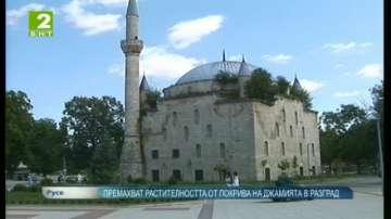 """Премахват растителността от покрива на джамията """"Макбул Ибрахим паша"""""""