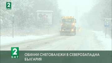 Обилни снеговалежи в Северозападна България