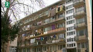 Приютът за бездомни във Варна е препълнен, има нужда от помощ