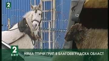 Няма птичи грип в област Благоевград