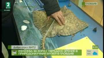 Изложба за хора с увредено зрение в Природонаучния музей в Пловдив