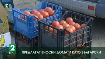 Предлагат вносни домати като български