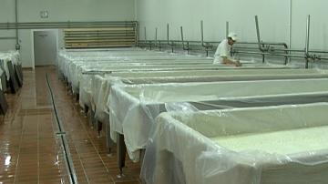 Преработватели искат Закон за производството на мляко и млечни продукти