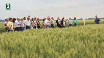 Селскостопанската академия иска нов начин на финансиране за институтите си
