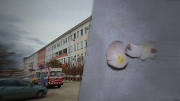 Лекарите от Враца замеряха с яйца заместник-министър Жени Начева