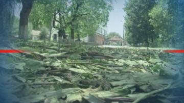 Градушка унищожи реколтата в три села във Врачанско