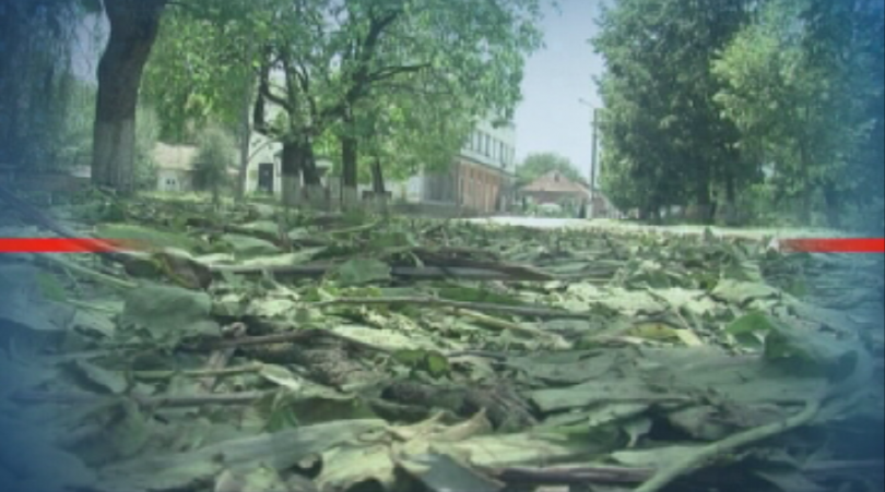 Във Врачанско градушка с големината на орех унищожи селскостопанската реколта