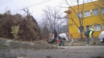 Над 50 сигнала за причинени щети са постъпили в община Враца