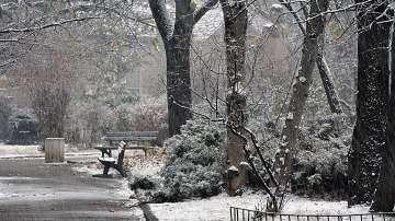 Жълт код за дъжд, сняг и силен вятър в цялата страна за 19 ноември