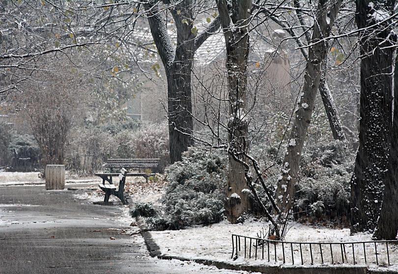 жълт код дъжд сняг силен вятър цялата страна ноември