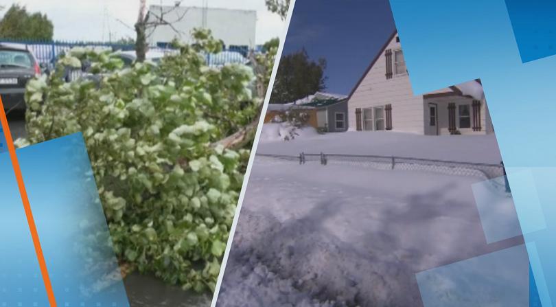 Обилен снеговалеж и силни бури връхлетяха САЩ и Полша