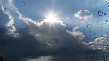 Ситуацията в Североизточна България след бурния вятър вече се нормализира