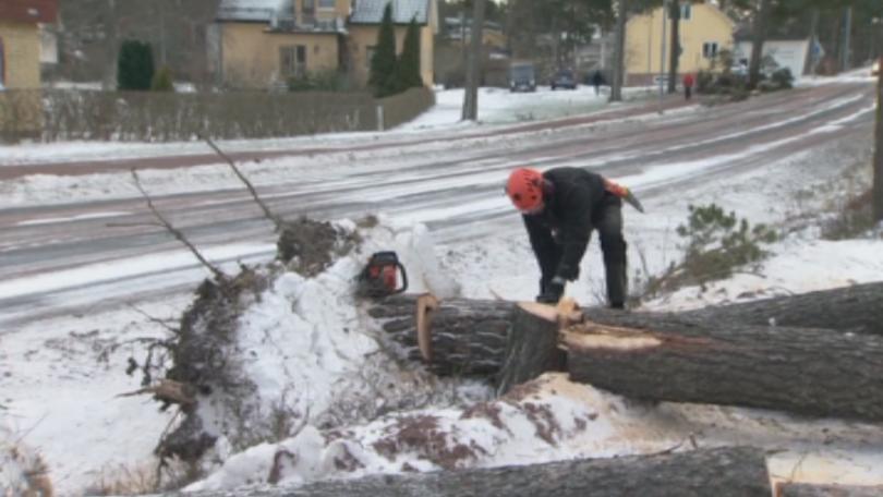 Лошото време там остави хиляди домакинства без ток. Според статистиката