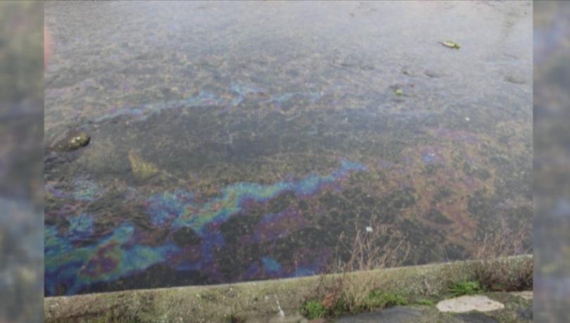 Няма данни за сериозно замърсяване на водите на река Въча.