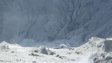 Няма признаци на живот в района на изригналия вулкан в Нова Зеландия