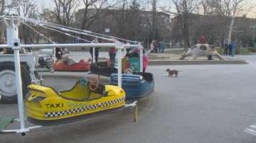 Защо в парка Заимов от 5 години има незаконна въртележка?