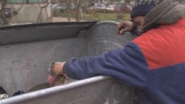 Столична общината глобява ровещи из контейнерите заради мръсния въздух