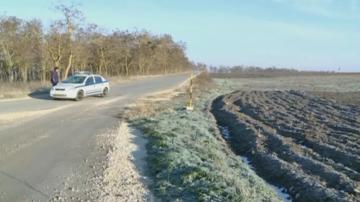 Частично бедствено положение в община Вълчи дол заради чумата по свинете