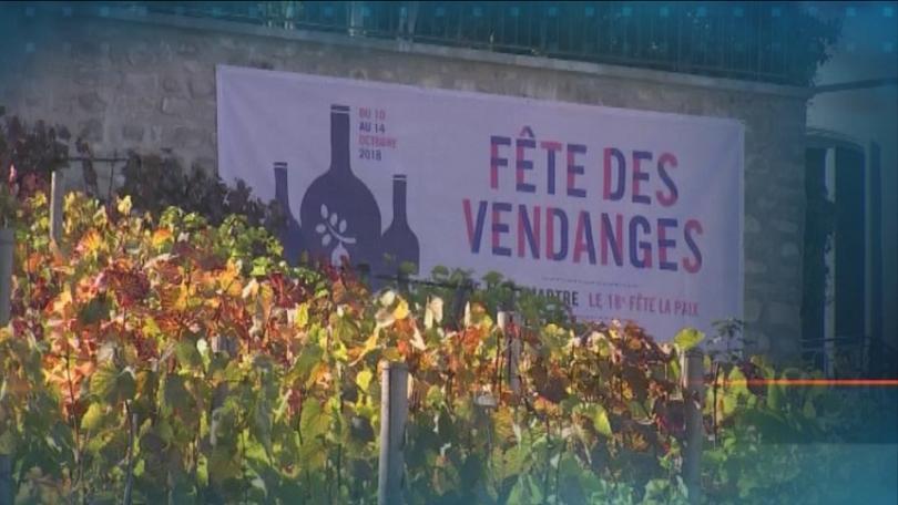 Фестивалът на гроздобера в Монмартър се провежда тази седмица. Той
