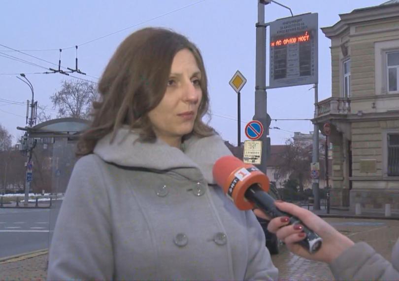 Снимка: Зам.-кметът по околна среда в София: Замърсяването на въздуха е спаднало със 17%