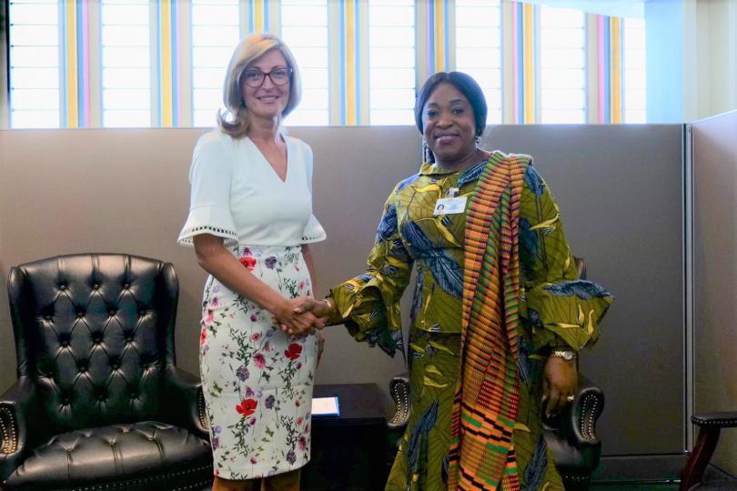 снимка 1 Екатерина Захариева се срещна с колегите си от Индия и Гана
