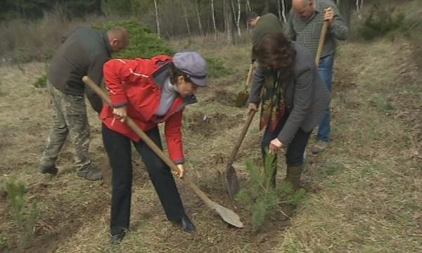 започва есенното засаждане новата гора софия