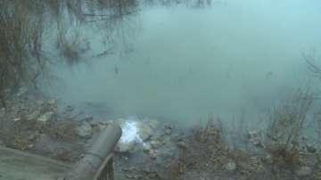 Предприятие изпуска мръсни води в р. Дунав