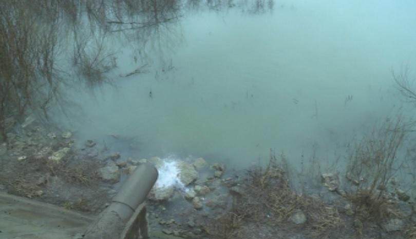Замърсяване на река Дунав при Русе констатираха екоинспекторите. При извънредна