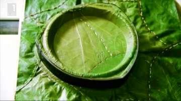 Зелена светлина: Чинии от сухи листа