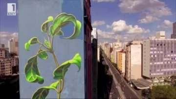 Зелена светлина: Гигантски плевели превземат градовете