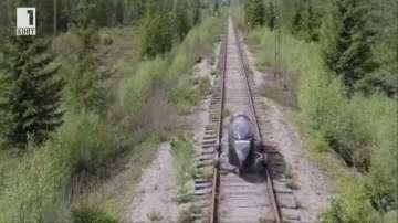 Зелена светлина: железопътна линия за експерименти